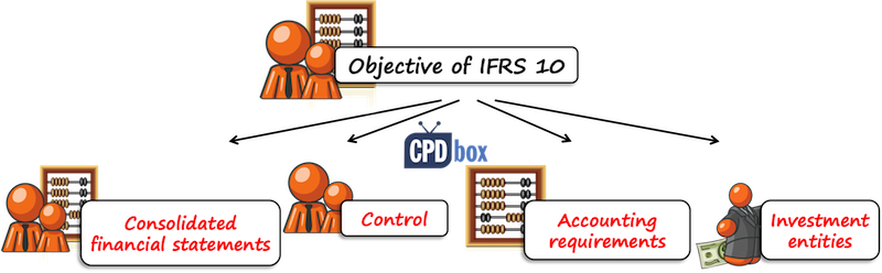objectives of consolidated financial statements