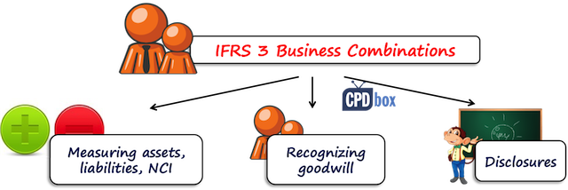 IFRS 3 Objective