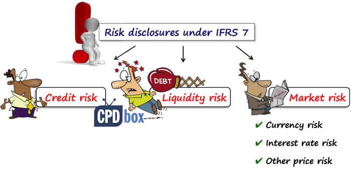 IFRS 7 Risk Disclosures